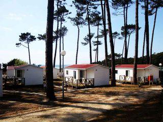 Camping Orbitur - Angeiras