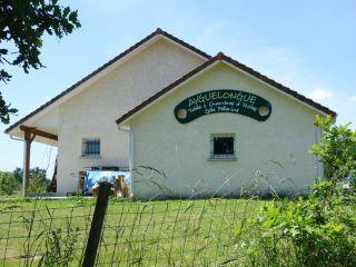 Gîte Ayguelongue, Géus-d'Arzacq