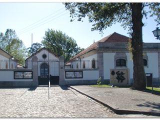 Albergue-Residencia do Senhor do Galo