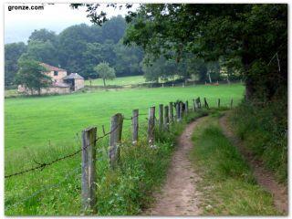 De camino a Borres