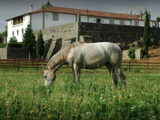 Quinta da Casa Alta, Fontoura