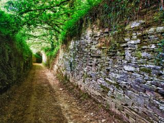 Camino en la variante de Samos