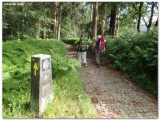 Peregrinos hacia Pontevedra, Camino Portugués