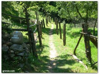 Senda del Camino Primitivo