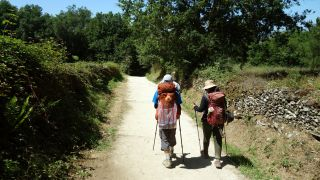 1º de agosto de 2018, pocos peregrinos a la hora punta entre Sarria y Portomarín, un 30% menos que el año pasado en las mismas fechas según algunas estimaciones
