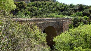 Puente viejo sobre el Rouvignous, Arboras
