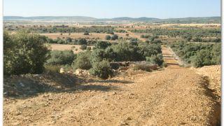 De camino a Bercianos de Valverde