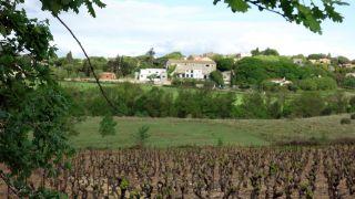Llegada a La Boissière entre viñas