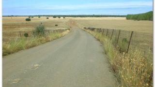 De camino a Calzadilla de los Hermanillos