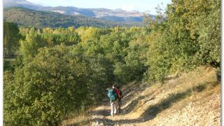 De camino a Cascantes