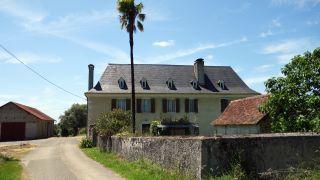 Casa tradicional con palmera, Castillon