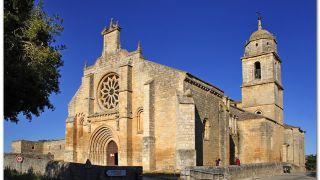 Colegiata de la Virgen del Manzano, Castrojeriz