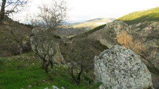 Entorno de la ermita de San Antón en Moclín