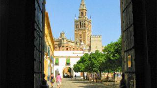 La Giralda desde el Real Alcázar de Sevilla