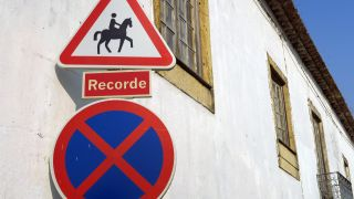 Golegã es conocida como la villa del caballo lusitano