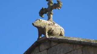 El jabalí, símbolo de la cada nobiliaria de los Andrade, en Betanzos