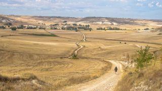 Peregrinos del Camino de Santiago hacia Hornillos del Camino
