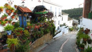 Macetas con flores y plantas en la calle Amargura de Moclín