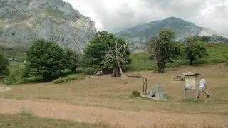 Área recreativa del Castañar milenario del Habario