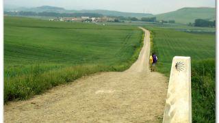 Bajando a Redecilla del Camino