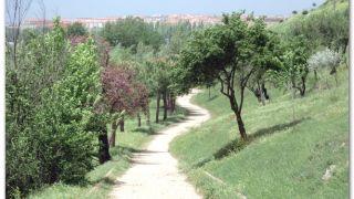 Entrando en Salamanca