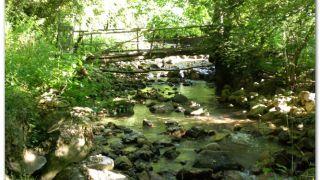 Río Nonaya, en la salida de Salas