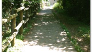 De camino al Monasterio Viejo de San Juan de la Peña
