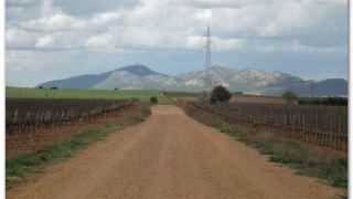 De camino a Torremejía