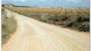 Llegando a Villafranca de los Barros