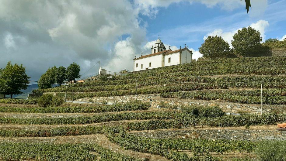 Los viñedos del Douro, un paisaje declarado Patrimonio Mundial por la Unesco