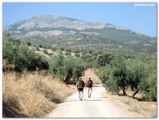 De camino a Alcaudete