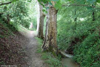 De camino a Villefranche-de-Lauragais