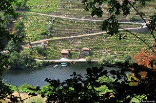Bancales o muras sobre el río Miño en Belesar