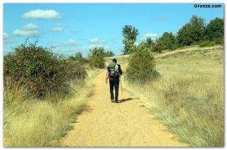 De camino a Cabanillas