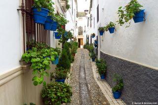 Calleja florida en el casco antiguo de Castro del Río
