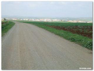 De camino a Calzadilla de los Barros