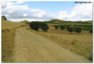 De camino a Alcanadre