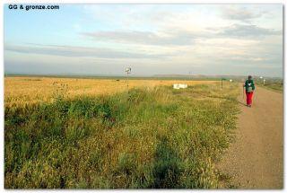 De camino a Bujaraloz