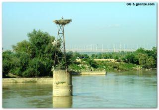 El Ebro, de camino a Luceni