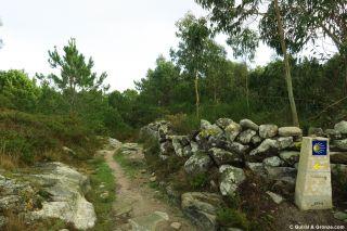 Bonito tramo de camino hacia Baredo
