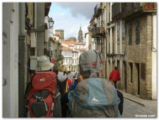 Camino de Santiago organizado