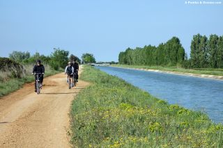 Canal du Bas-Rhône, de camino a Vauvert