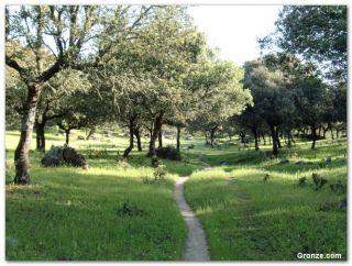 De camino al Arco de Cáparra