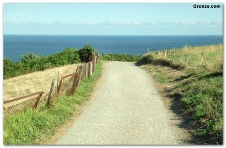 De camino a la Playa del Silencio (Fuera ruta), Castañeras