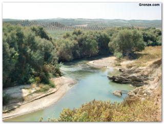 Río Guadajoz, de camino a Castro del Río