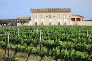 Château Lamargue, de camino a Vauvert