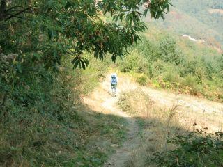 De camino a Livinhac-le-Haut
