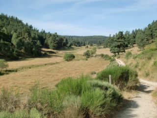 De camino a Aumont-Aubrac