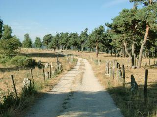 De camino a Les Estrets