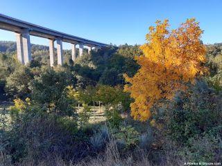 Viaducto de la A-52, de Mesón de Erosa a San Lourenzo de Pentes